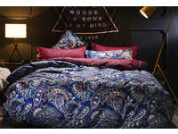 Queen Size Corliss Blue Paisley Quilt Cover Set